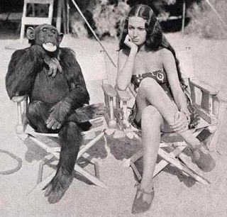 Monkey-see