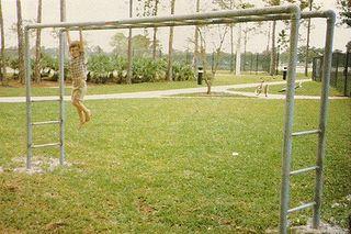 Overhead-horizontal-ladder
